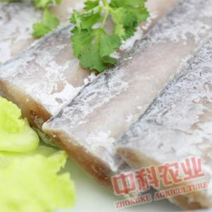 【星龍港】冰鮮帶魚段 精選舟山帶魚650g
