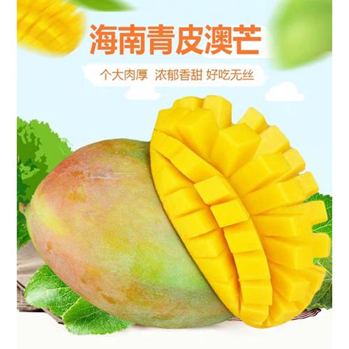 海南大芒果2.5kg